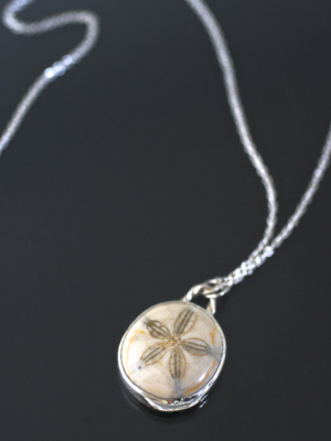 Sand Dollar Fossil Necklace
